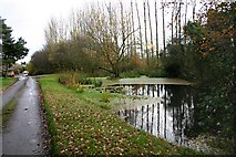 SP2079 : Walsal End Pond by Jim Read