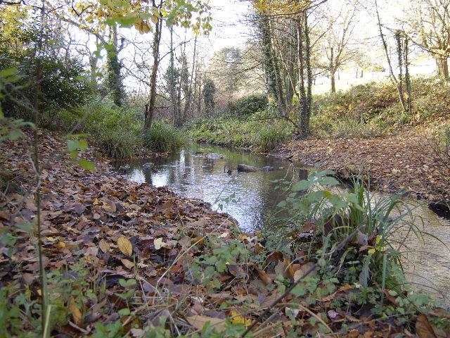 Stream at western edge of Fairwater Park