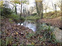ST1477 : Stream at western edge of Fairwater Park by John Carter