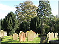NZ0863 : (Part of) the churchyard of St. Mary's Church, Ovingham by Mike Quinn