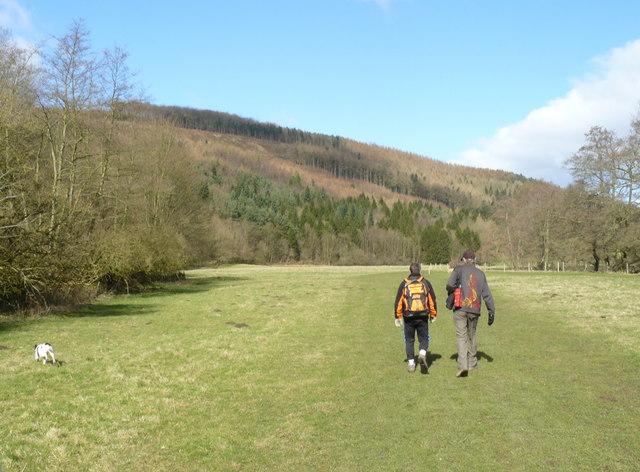 Walking by Lindop Wood