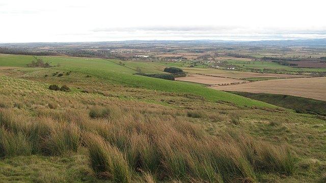 Rough grazing, Langton Edge