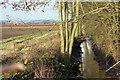 TA0054 : Wellspring Drain by Peter Church
