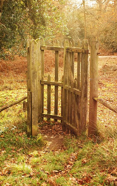 Kissing gate, Cyril Hart arboretum, Forest of Dean