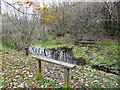 NY3858 : Bench and pond, Kingmoor (South) Nature Reserve by Rose and Trev Clough