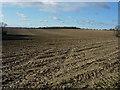 TL6554 : Large stubble fields by Hugh Venables