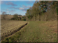 TL6554 : Footpath past Bushy Grove by Hugh Venables