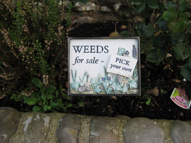 Who needs gardeners!