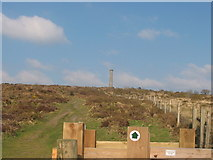 SX3771 : The chimney stack from Kit Hill Mine by M Hunter