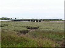 SD0994 : Salt Marsh by the R. Esk by N Chadwick