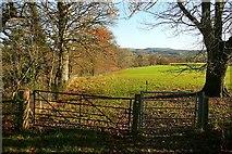 SO0153 : Wye Valley Walk at Dolyrerw by Graham Horn