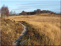 NS3778 : Footpath alongside Carman Reservoir by Lairich Rig