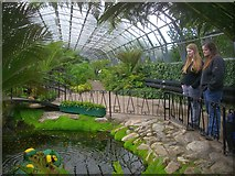 NJ9304 : David Welch Winter Gardens by Bob Embleton