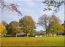 NJ9304 : Winter Gardens, Duthie Park, Aberdeen by Bob Embleton