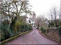 SX8663 : Love Lane, Marldon by Paul Hutchinson