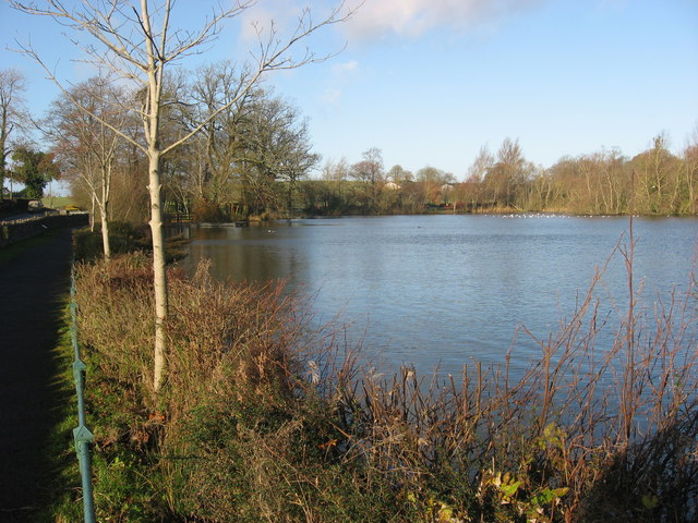 Stephenstown Pond, Knockbridge, Co. Louth