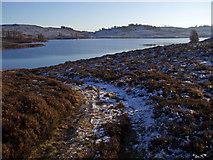 NO0255 : Track North of Lochan Oisinneich Mor by Dorothy Carse