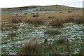 HU4474 : Hill of Lee, Mossbank by Mike Pennington
