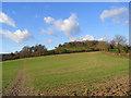 SU8598 : Farmland, Hughenden by Andrew Smith