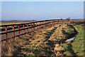 TL6155 : Horse fencing near Brinkley by Bob Jones