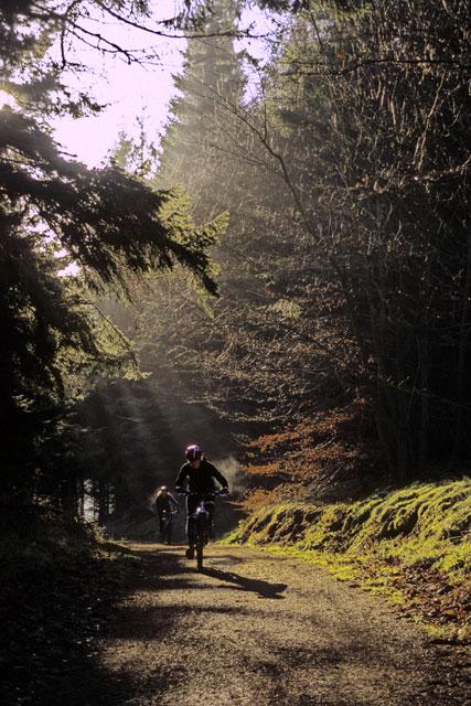 Track, Glentress
