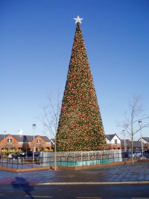 Giant Christmas Tree Cheshire Oaks 169 Eirian Evans