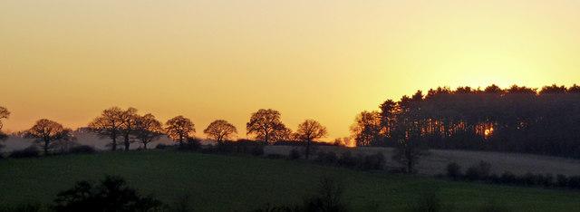 Farmland, Hog Hill, Enfield by Christine Matthews