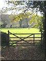 SW7836 : Winter sun on a field behind Horneywink Wood by Rod Allday