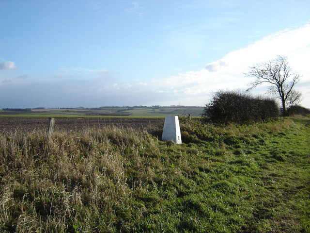Trig  Point  on  Newbald  Wold