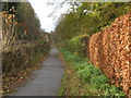 NY9265 : Path alongside the Newcastle to Carlisle railway line near The Spital by Mike Quinn