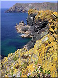 SW6813 : Seaward side of Asparagus Island by Jim Champion