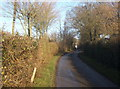 TM0349 : Looking along Wallow Lane by Andrew Hill