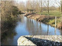 ST9102 : Spetisbury: the Stour upstream from Crawford Bridge by Chris Downer