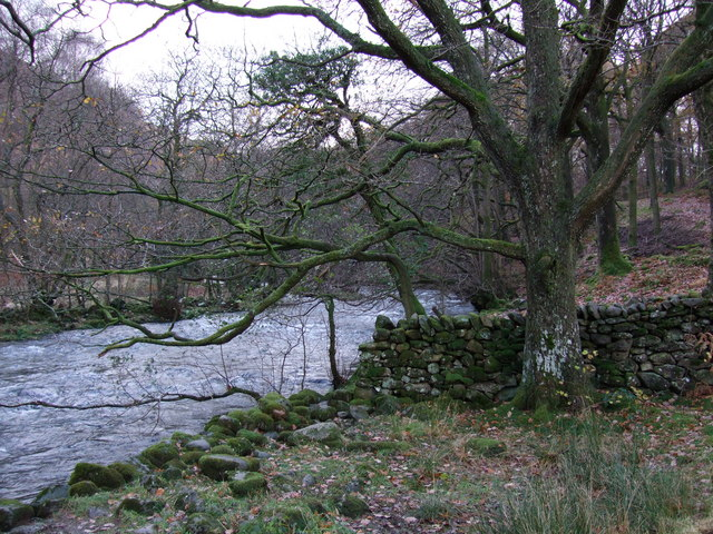 River and woods between Grasmere and Rydal Water