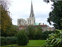 SU8504 : Chichester Cathedral seen from Bishop's Palace Gardens by Shazz
