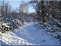TQ6895 : Norsey Snowscene - Round the Bend by Andy Barham