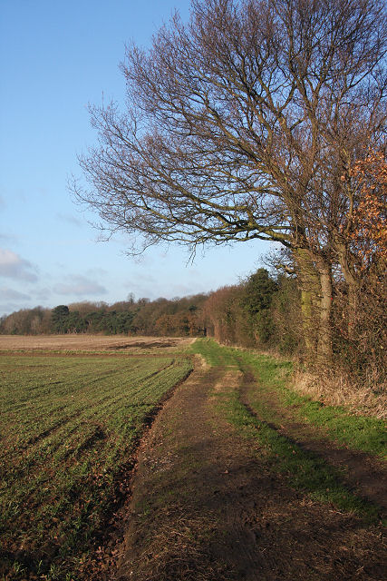 Bridleway to Great Barton