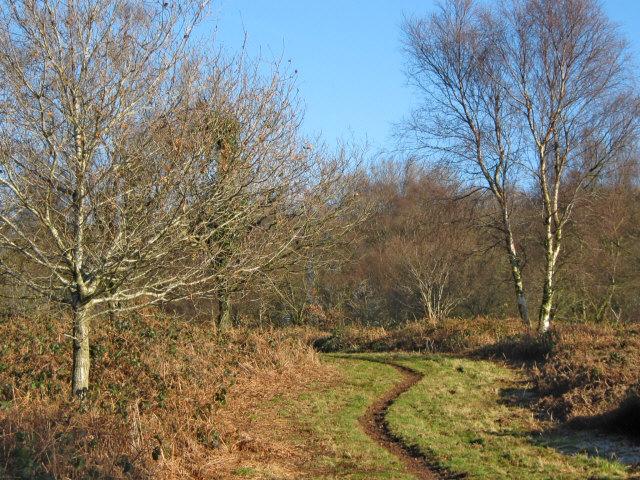 Path on Broomfield Hill