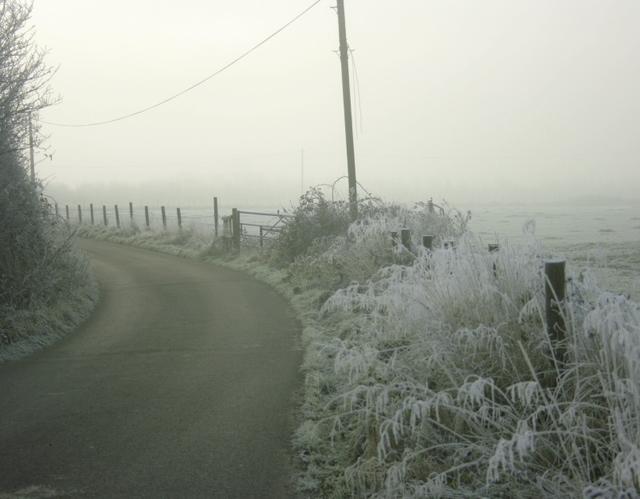 2008 : The lane to Oxen Leaze Farm
