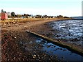 NS3477 : The shore near Cardross railway station by Lairich Rig