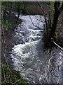 SM9736 : White water by ceridwen