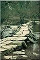 SS8632 : Tarr Steps by John Darch