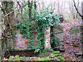 TG2726 : A sluice in the woods - part of a brick wall by Evelyn Simak