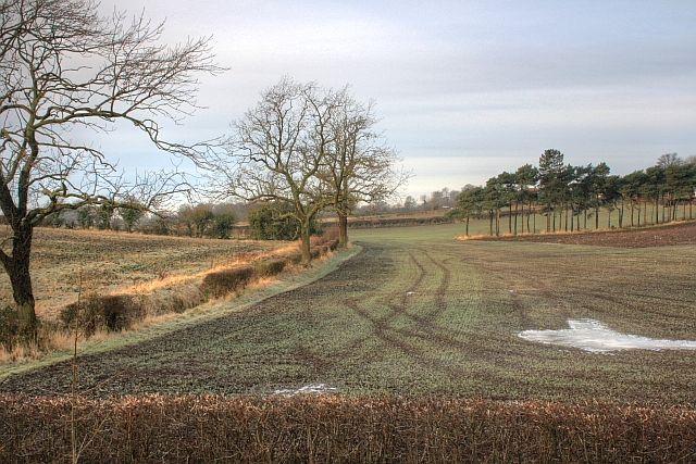 Across the Fields to Heighington