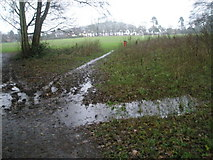 SU9948 : A boggy scene in Shalford Park by Basher Eyre