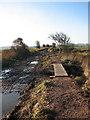 TG4622 : Footbridge on the path by Evelyn Simak