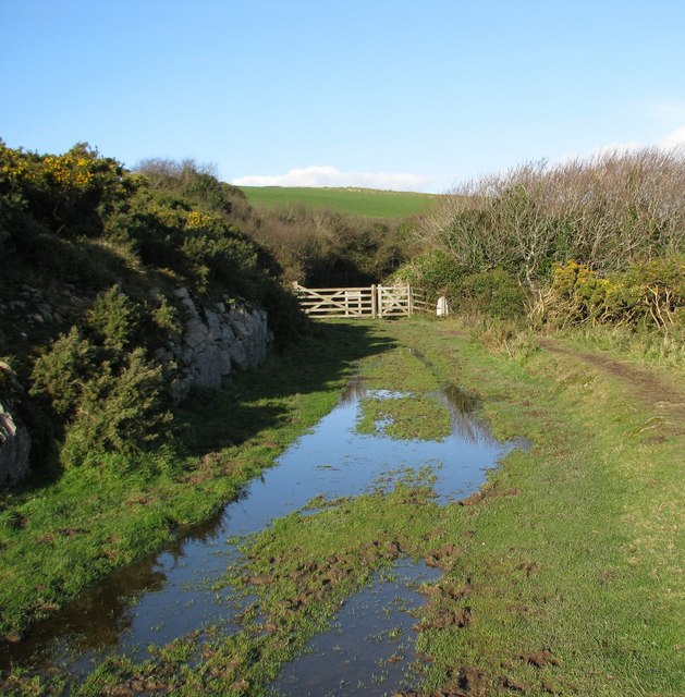 Waterlogged coastal footpath behind Stoke Point