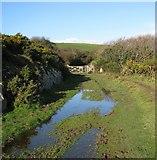 SX5646 : Waterlogged coastal footpath behind Stoke Point by Sarah Charlesworth