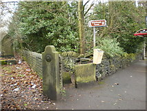 SE0724 : Footpath to Wainhouse Tower by Alexander P Kapp