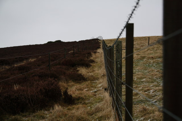 Fence and moor
